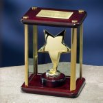 Brass Star Enclosed in Glass Box Achievement Award Trophies