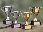 Trophy Cups with Piano Finish Wood Base Achievement Award Trophies